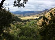Highlands Meander_Landscape scene on the Num-NumTrail in Dullstroom_Author R.Gwilt