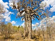 Wild Frontiers_Kaapmuiden_www.mtpa.co.za